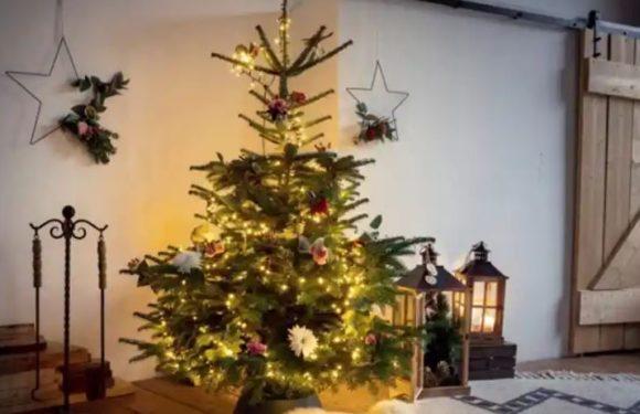 Díszítse fel otthonát karácsonyra